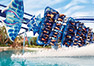 Save 50% on SeaWorld Tickets