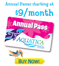 APO_annual_pass