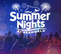 SeaWorld Summer Nights Celebrating America Concert Series