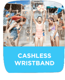 Adventure Island Cashless Wristband